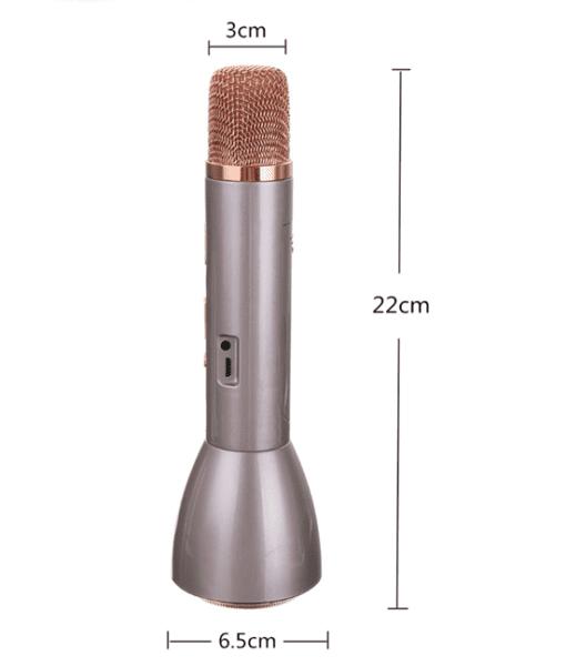 p1009-2-portable-bluetooth-karaoke-mic-and-speaker
