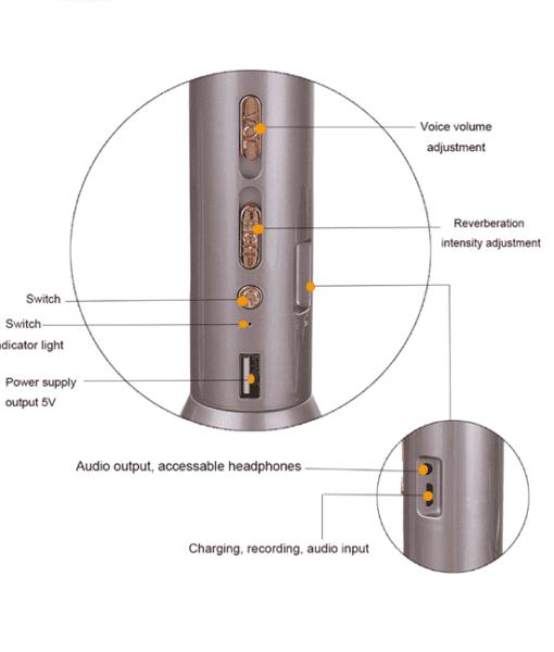 p1009-3-portable-bluetooth-karaoke-mic-and-speaker